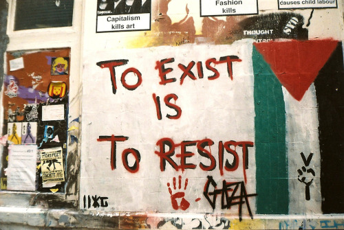 Institutions and the Occupation
